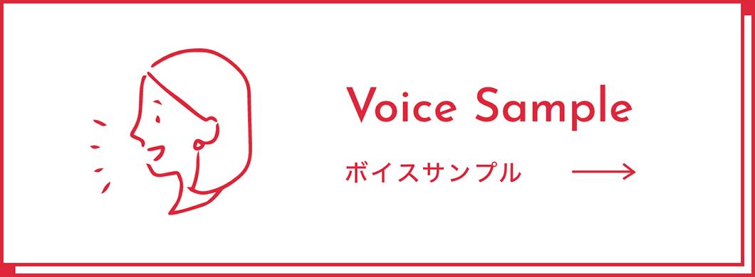 voice_btn